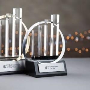 Yılın Firması Ödülü Dry Papyon da